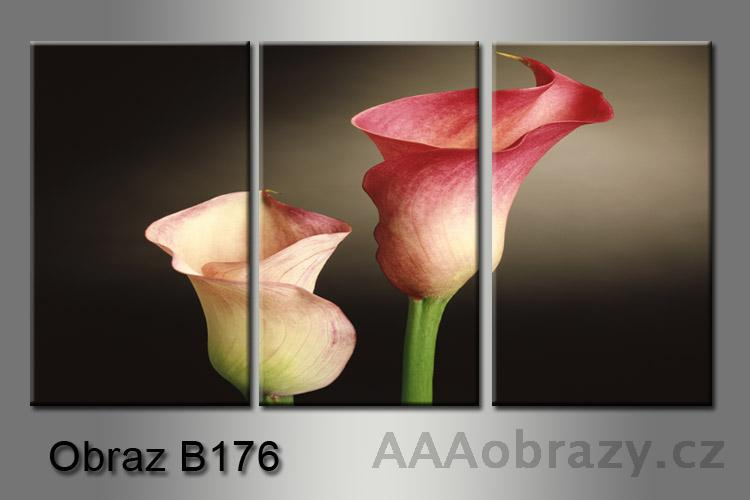 Obraz na plátně 3D 75x35cm B-176