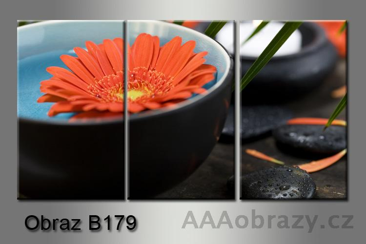 Obraz na plátně 3D 75x35cm B-179