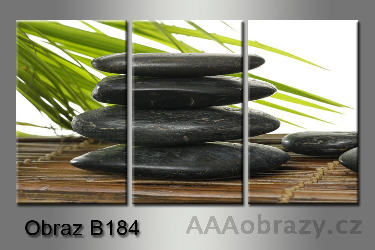 Obraz na plátně 3D 75x35cm B-184