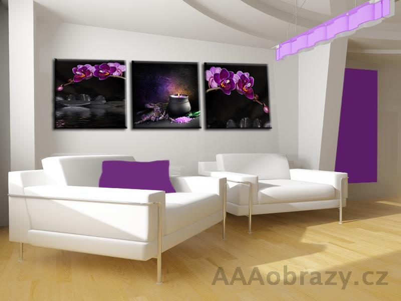3dílný obraz 120x40cm fialový motiv