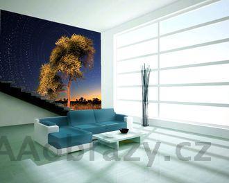 Moderní fototapeta na zeď vzor 46 strom, západ slunce