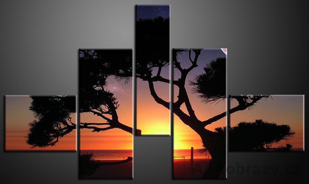 Obraz 5D 165x100cm vzor 92 západ slunce a strom