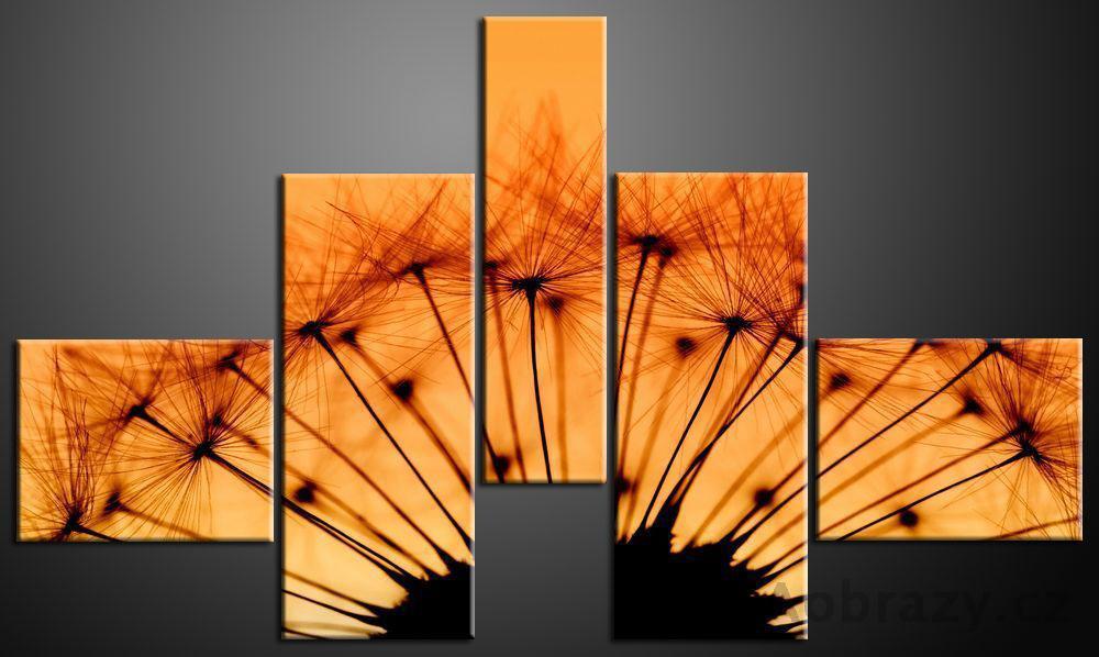Obraz 5D 165x100cm vzor 155 pampelička a západ slunce